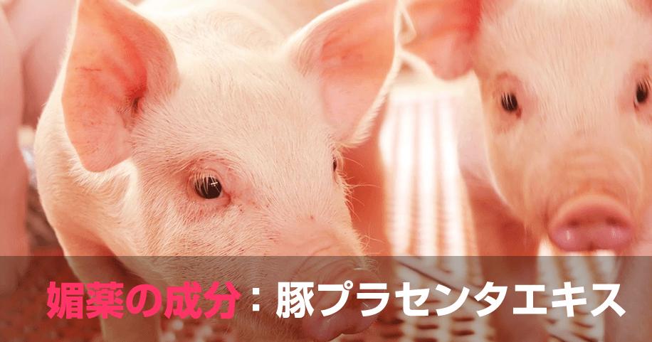 媚薬の成分:豚プラセンタエキス